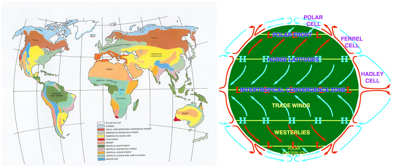 Climate and Circulation comparision.PNG